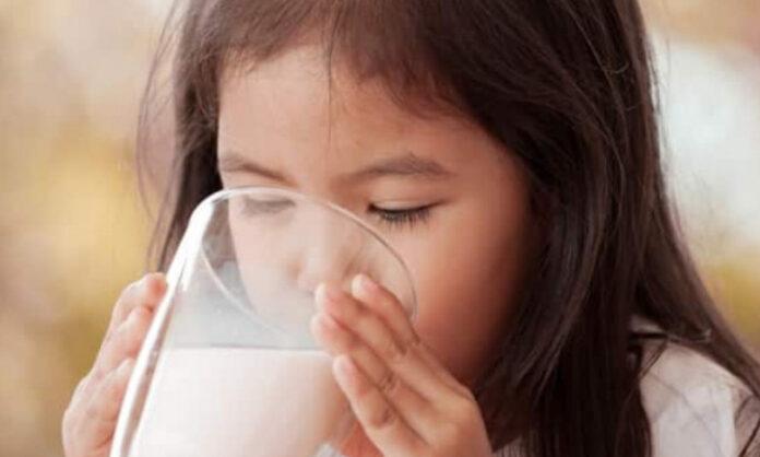nutrisi untuk kecerdasan anak